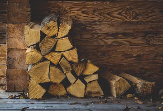 Holzschutz-News